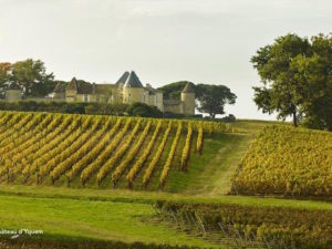 Excursion dans le vignoble bordelais