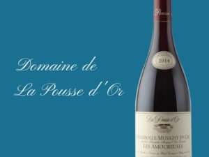 Domaine de la Pousse d'Or, sublime collection de grands bourgognes